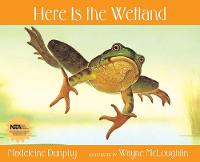 Here Is the Wetland (Paperback)