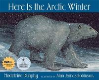Here Is the Arctic Winter (Paperback)