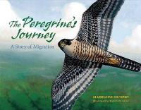 The Peregrine's Journey: A Story of Migration (Paperback)