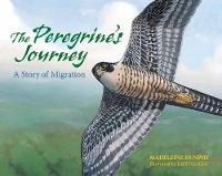 The Peregrine's Journey: A Story of Migration (Hardback)