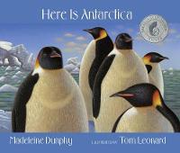 Here Is Antarctica (Hardback)