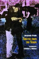 Shelter from the Storm - Hispanic Series (Paperback)