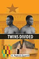 Twins Divided (Paperback)