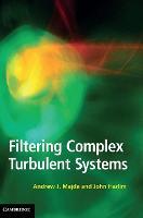 Filtering Complex Turbulent Systems (Hardback)