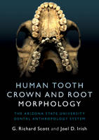 Human Tooth Crown and Root Morphology: The Arizona State University Dental Anthropology System (Paperback)