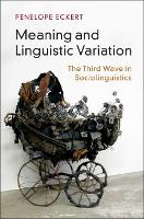 Meaning and Linguistic Variation: The Third Wave in Sociolinguistics (Paperback)