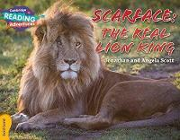 Scarface: The Real Lion King Gold Band - Cambridge Reading Adventures (Paperback)