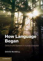 How Language Began: Gesture and Speech in Human Evolution - Approaches to the Evolution of Language (Paperback)