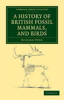 A History of British Fossil Mammals, and Birds - Cambridge Library Collection - Earth Science (Paperback)