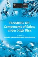 Teaming Up: Components of Safety Under High Risk (Paperback)