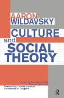 Culture and Social Theory (Paperback)