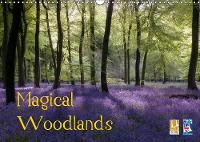 Magical Woodlands 2019: The beauty of British woodlands throughout the year. - Calvendo Nature (Calendar)
