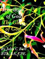The Doxa of God; The Glory of God. (Hardback)