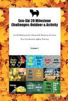 Sco-Shi 20 Milestone Challenges