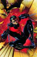 Nightwing Volume 1: Traps and Trapezes TP (Paperback)