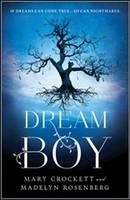 Dream Boy (Paperback)
