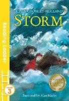 Storm - Reading Ladder Level 3 (Paperback)