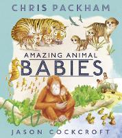 Amazing Animal Babies (Paperback)
