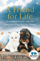 A Friend for Life (Paperback)