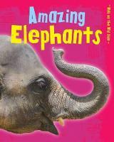 Amazing Elephants - Read Me!: Walk on the Wild Side (Paperback)