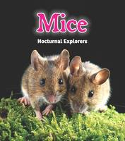 Mice: Nocturnal Explorers - Read and Learn: Night Safari (Paperback)