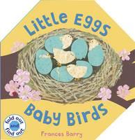 Little Eggs, Baby Birds (Hardback)