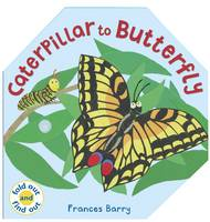 Caterpillar To Butterfly (Hardback)
