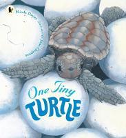 One Tiny Turtle (Paperback)