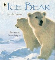Ice Bear (Paperback)