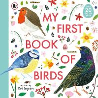 My First Book of Birds - My First Book of (Paperback)