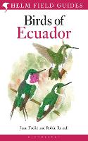 Birds of Ecuador - Helm Field Guides (Paperback)