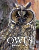 Owls (Hardback)