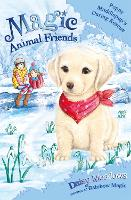 Magic Animal Friends: Poppy Muddlepup's Daring Rescue: Special 1 - Magic Animal Friends (Paperback)