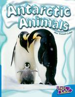 Antarctic Animals Fast Lane Blue Non-Fiction (Paperback)