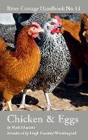 Chicken & Eggs: River Cottage Handbook No.11 - River Cottage Handbook (Hardback)