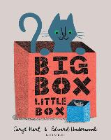 Big Box Little Box (Paperback)