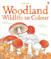 Woodland Wildlife to Colour (Paperback)