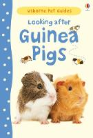Looking after Guinea Pigs - Pet Guides (Hardback)