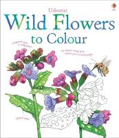 Wild Flowers to Colour (Paperback)