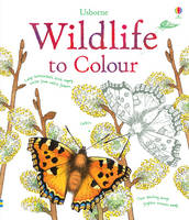 Wildlife to Colour - Nature Colouring Books (Paperback)
