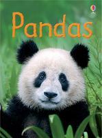 Pandas - Beginners (Hardback)