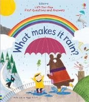 Lift-the-Flap First Questions and Answers What makes it rain? - Lift-the-Flap First Questions & Answers (Board book)