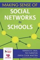 Making Sense of Social Networks in Schools (Paperback)