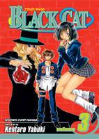 Black Cat, Vol. 3 - Black Cat 3 (Paperback)