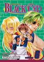 Black Cat, Vol. 6 - Black Cat 6 (Paperback)