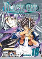 Black Cat, Vol. 16 - Black Cat 16 (Paperback)