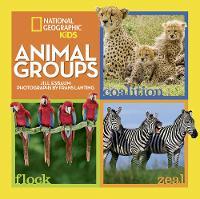 Animal Groups - Animals (Hardback)