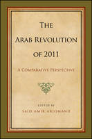 Arab Revolution of 2011, The: A Comparative Perspective - SUNY series, Pangaea II: Global/Local Studies (Paperback)