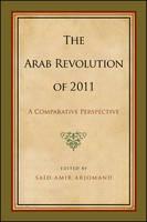 Arab Revolution of 2011, The