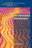 One-Dimensional Nanostructures - Lecture Notes in Nanoscale Science and Technology 3 (Paperback)
